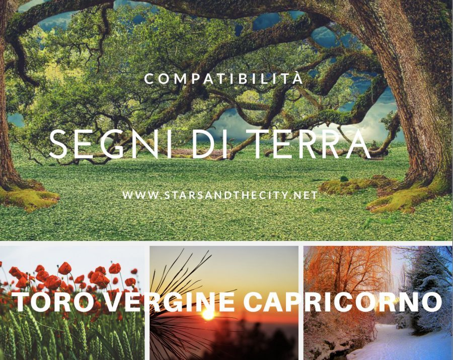 Segni di terra stars and the city