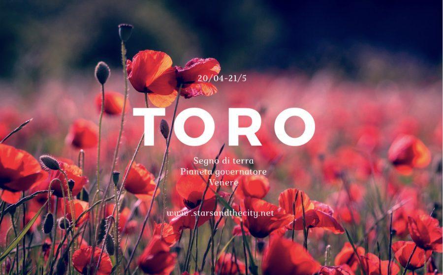 Toro-segni di terra, starsandthecity,